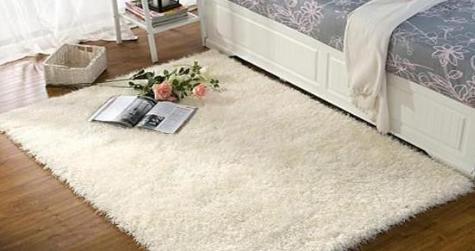 Carpet Use Evaluation
